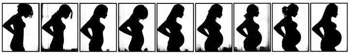 увеличение живота во время беременности