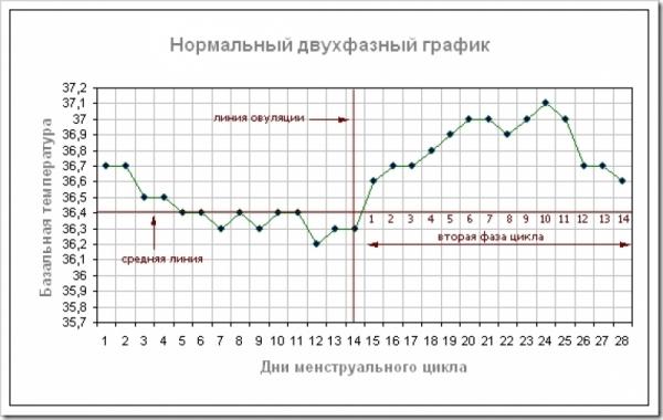 график базальной тепературы
