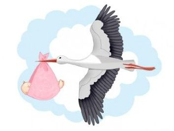 приметы для зачатия