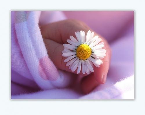 Исламские поздравления с рождением дочери